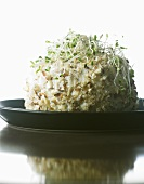 Ball of fresh goat cheese with hazelnuts & alfalfa sprouts