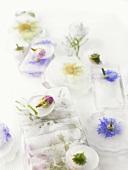 Verschiedene Blüten in Eis gefroren