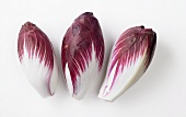 Three heads of radicchio