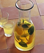Home-made lemon balm and mint liqueur in carafe, glasses