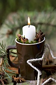 Candle in a mug with moss and star anise