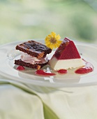 Cassis & vanilla terrine with chocolate and redcurrant fancy