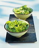 Beech leaf and couscous salad
