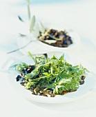 Chervil tip salad with olives