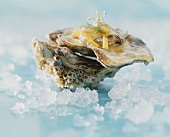 Oyster in vegetable jelly on crushed ice