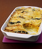 Butternut squash and potato gratin with sage