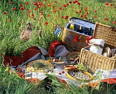Picnic in a meadow with poppies
