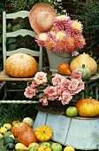 Autumn still life: pumpkins, roses and dahlias
