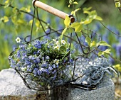 Bunch of wild flowers in a wire basket on stones