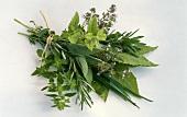 Bunch of herbs