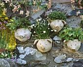 Various herbs in pig flowerpots in garden