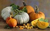 Pumpkin still life with different varieties