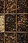 Various coffee mixtures in a type case
