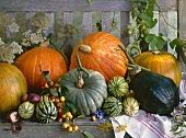 Still life with pumpkins on a wooden bench
