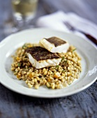 Fried John Dory on pearl barley risotto