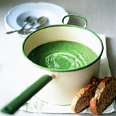 A pan of nettle and spinach soup with toast
