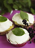 Cupcakes with elderberries
