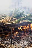 Spring onions on a grill over a fire