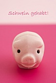 A lucky pink pig and the words 'Schwein gehabt'