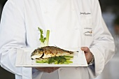 A chef serving fish with fennel and limes