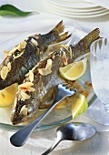 Grilled trout with flaked almonds