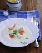 Horseradish and mustard soup with smoked salmon