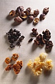 Various dried Chinese mushrooms