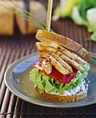 Sliced chicken breast, soft cheese and salad in sandwich
