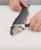Cutting a trout's head off with a knife