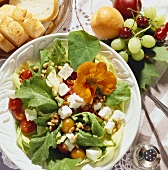 Mixed summer salad with sheep's cheese and pine nuts
