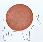A slice of beef salami on a drawing of a cow (illustration)