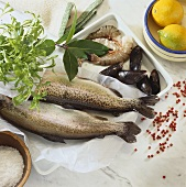Fresh trout, mussels, prawns, herbs and lemons