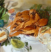 Cooked freshwater crayfish with parsley butter