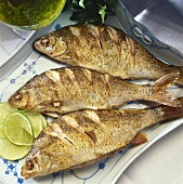 Fried roach with green sauce