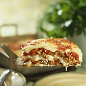 A portion of lasagne bolognese on a server