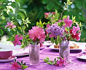 Rhododendrons, azaleas & lilac in glasses on table laid for coffee