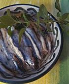 Tapa (Marinated anchovies)