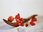 Frische Beeren mit Zucker auf Holzlöffel