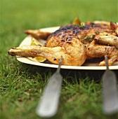Mariniertes, gegrilltes Hähnchen auf Platte im Gras