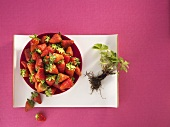 Fresh strawberries with strawberry plant