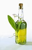 A bottle of ramsons (wild garlic) oil