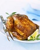 A whole roast chicken
