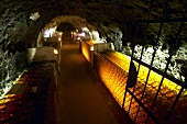 Weinkeller, Oremus Winery, Tolcsva, Ungarn