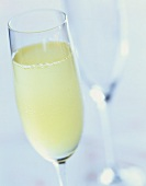 Bellini: cocktail made with Prosecco and peach puree