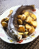 Catfish with roast potatoes