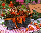 Arrangement of physalis, rose hips, ivy and clematis