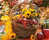 Korb mit Sonnenblume, Äpfeln und Hagebutten