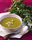 Cold avocado and carrot soup with basil flowers