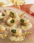 Snails with herb butter on sea salt