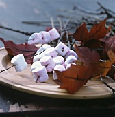 Marshmallows speared on thin maple twigs
